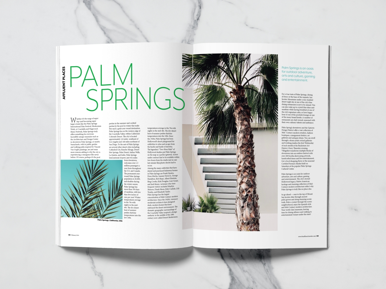PALM SPRINGS MOCKUP copy